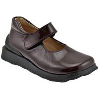 Obuća Djeca Balerinke i Mary Jane cipele Naturino  Smeđa