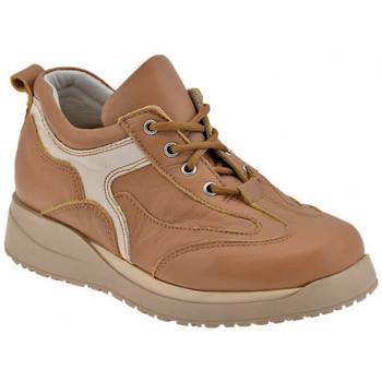 Obuća Dječak  Derby cipele Chicco  Smeđa