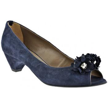 Obuća Žene  Salonke Progetto  Blue