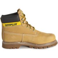 Obuća Muškarci  Polučizme Caterpillar Colorado Žuta