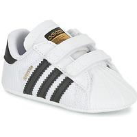 Obuća Djeca Niske tenisice adidas Originals SUPERSTAR CRIB Bijela