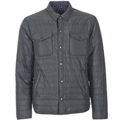 Odjeća Muškarci  Pernate jakne Pepe jeans WILLY Crna