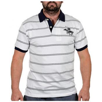 Odjeća Muškarci  Majice kratkih rukava Santa Barbara  Bijela