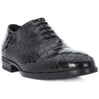 Obuća Muškarci  Derby cipele Eveet CROCCO NERO Nero