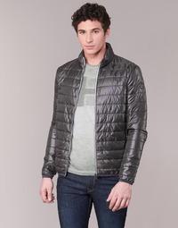 Odjeća Muškarci  Pernate jakne Napapijri ACALMAR Siva