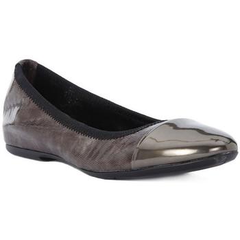 Obuća Žene  Balerinke i Mary Jane cipele Frau WAVE TAUPE Marrone