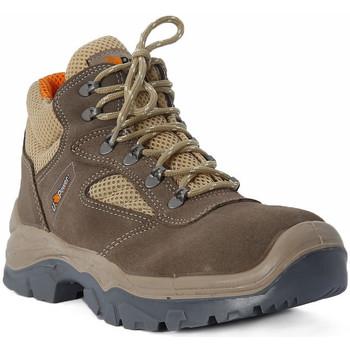 Obuća Muškarci  Pješaćenje i planinarenje U Power DESERT Multicolore