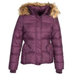 Odjeća Žene  Pernate jakne Naf Naf BEGY Bordo