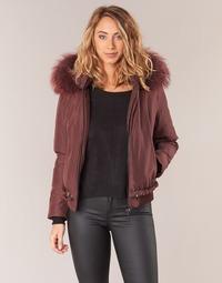 Odjeća Žene  Kratke jakne Oakwood 62432 Bordo