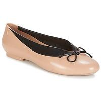 Obuća Žene  Balerinke i Mary Jane cipele Melissa JUST DANCE Bež