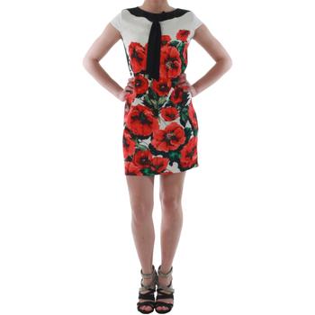 Odjeća Žene  Kratke haljine Rinascimento 1253/16A_ROSSO Blanco
