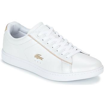 Obuća Žene  Niske tenisice Lacoste CARNABY EVO 118 6 Bijela