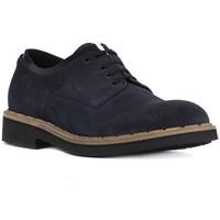 Obuća Muškarci  Derby cipele Eveet CAMOSCIO BLU Blu