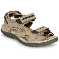 Obuća Muškarci  Sportske sandale Geox S.STRADA D Sand / Crna