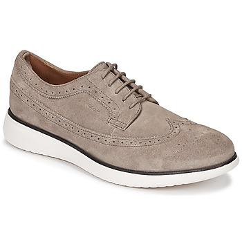 Obuća Muškarci  Derby cipele Geox WINFRED C Taupe