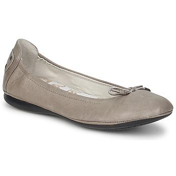 Obuća Žene  Balerinke i Mary Jane cipele PLDM by Palladium MOMBASA CASH Siva