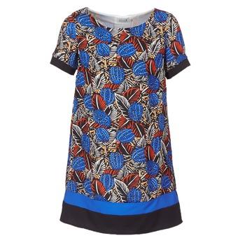 Odjeća Žene  Kratke haljine Molly Bracken JUNCE Blue