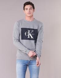 Odjeća Muškarci  Sportske majice Calvin Klein Jeans HOTORO REGULAR Siva