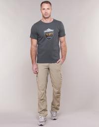 Odjeća Muškarci  Cargo hlače Columbia SILVER RIDGE II CARGO PANT Bež