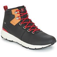 Obuća Muškarci  Niske tenisice DC Shoes MUIRLAND LX M BOOT XKCK Crna / Red