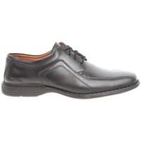 Obuća Muškarci  Derby cipele Josef Seibel Josef 33206 43600 33206 43600 Crna