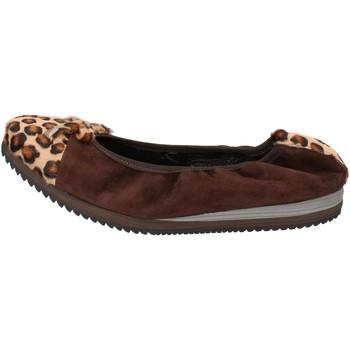 Obuća Žene  Balerinke i Mary Jane cipele Calpierre Balerinke AD574 Smeđa