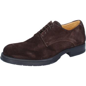 Obuća Muškarci  Derby cipele & Oksfordice Salvo Barone classiche marrone camoscio BZ164 Marrone