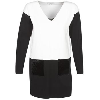 Odjeća Žene  Kratke haljine Morgan RMAOLI Multicolour