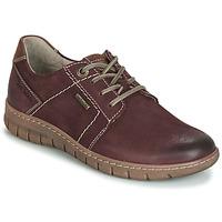 Obuća Žene  Derby cipele Josef Seibel Steffi 59 Smeđa