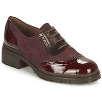 Obuća Žene  Derby cipele Wonders NAPHYA Bordo