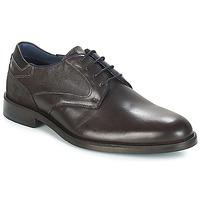 Obuća Muškarci  Derby cipele Carlington JECINZA Siva