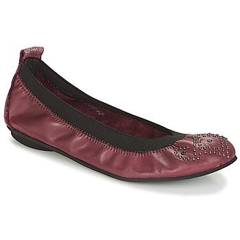Obuća Djevojčica Balerinke i Mary Jane cipele André FAUSTINE Bordo