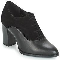 Obuća Žene  Derby cipele André FEI Crna