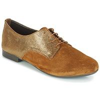 Obuća Žene  Derby cipele André COMPLICE Smeđa