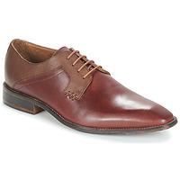 Obuća Muškarci  Derby cipele André CRYO Smeđa