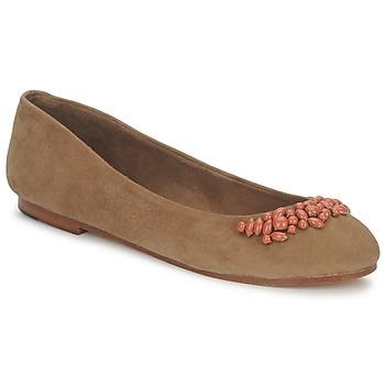 Obuća Žene  Balerinke i Mary Jane cipele Ambre Babzoe DUFFY Camel